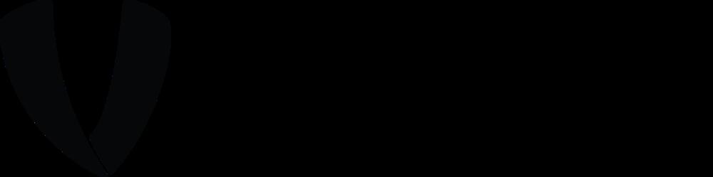 V-VETO